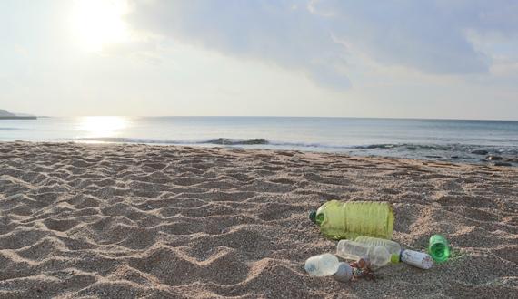 【株式会社海族】環境問題の解決と自然と調和する未来へ