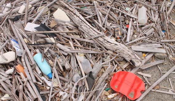 株式会社海族DMC_プラスチックゴミによる海洋汚染について