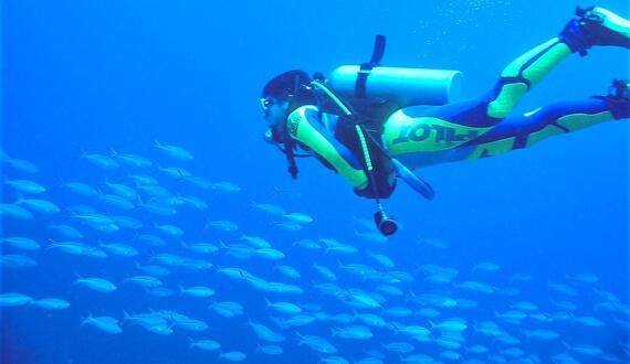 株式会社海族DMC_都市部だけの問題ではない海洋汚染