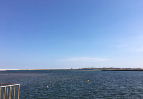 亘理町荒浜鳥の海にて始動しました!